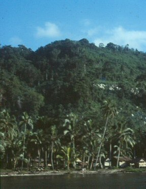 Mountain home of the Kwaio, Solomon Islands