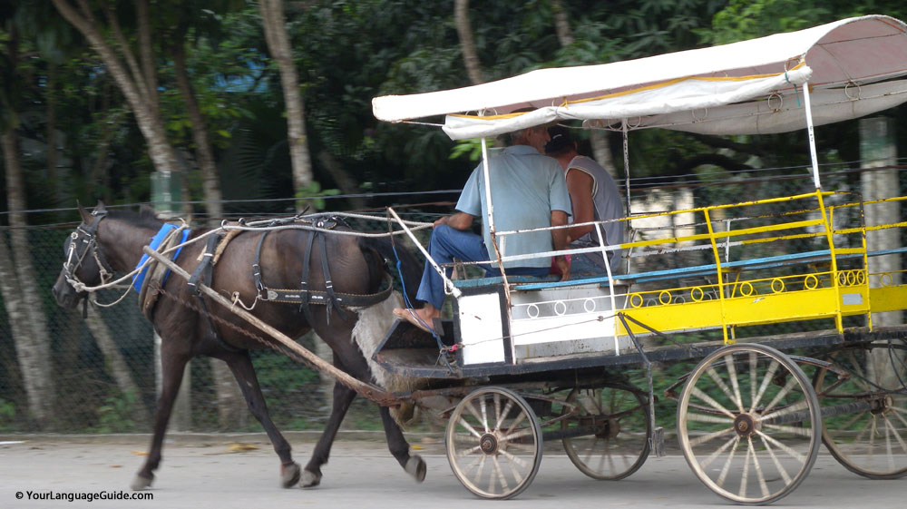 Horse drawn cart, Cuba