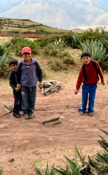 Boys play with trucks crafted from yucca plants