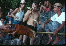 Philippine pig roast