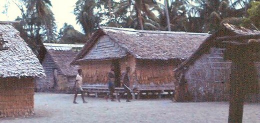 Leaf huts in a Solomon Islands village